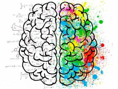 Taller de Neuroplasticidad Cerebral
