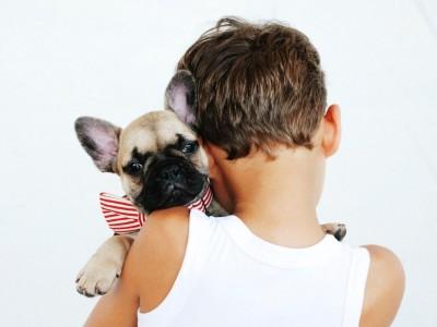 Niños y animales: un beneficioso tandém