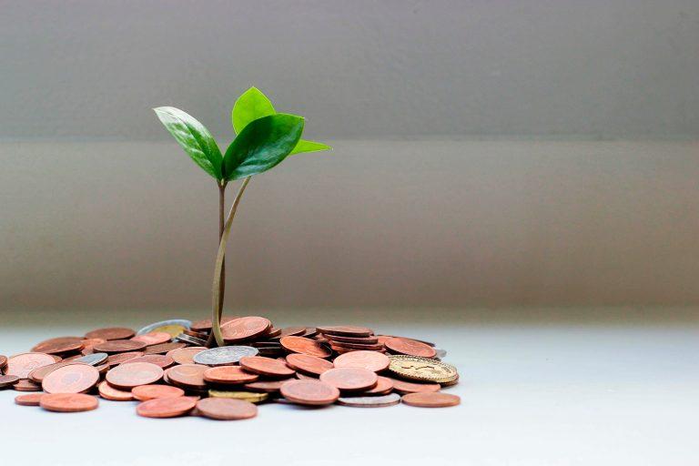 Dinero, éxito y transgeneracional
